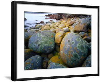 Granite Boulders at Wineglass Bay-Rob Blakers-Framed Photographic Print