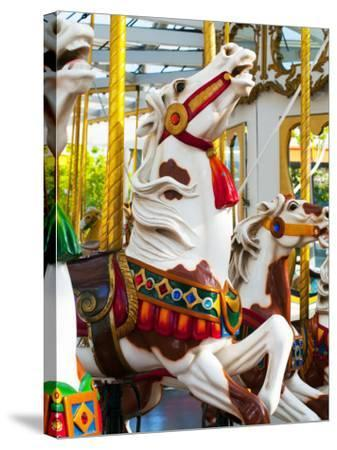Carousel Horses at Yerba Buena Center for the Arts-Sabrina Dalbesio-Stretched Canvas Print