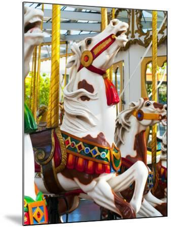 Carousel Horses at Yerba Buena Center for the Arts-Sabrina Dalbesio-Mounted Photographic Print