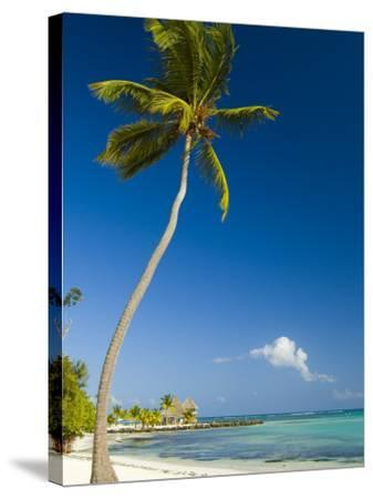 Beach at Punta Cana-Veronica Garbutt-Stretched Canvas Print