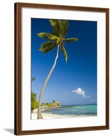 Beach at Punta Cana-Veronica Garbutt-Framed Photographic Print