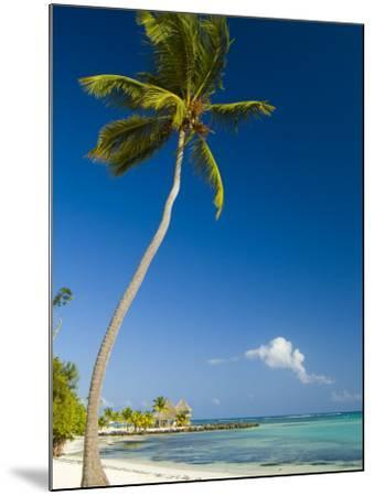 Beach at Punta Cana-Veronica Garbutt-Mounted Photographic Print