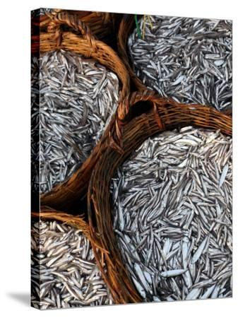 Baskets of Fish on Beach-Paul Kennedy-Stretched Canvas Print