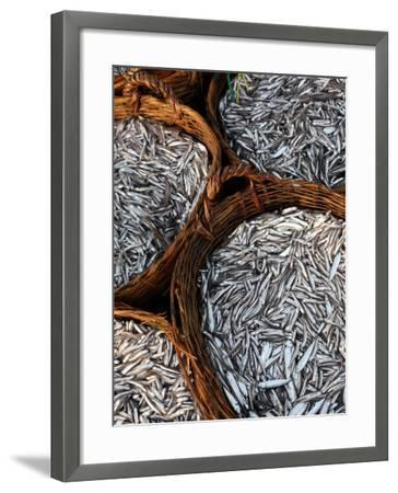 Baskets of Fish on Beach-Paul Kennedy-Framed Photographic Print