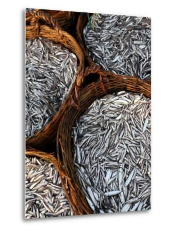 Baskets of Fish on Beach-Paul Kennedy-Metal Print