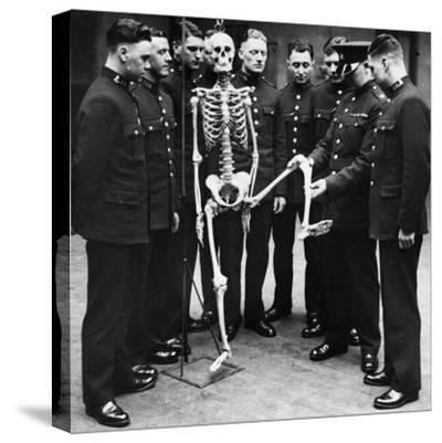 Skeleton Force--Stretched Canvas Print