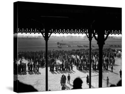 Gatwick Races--Stretched Canvas Print