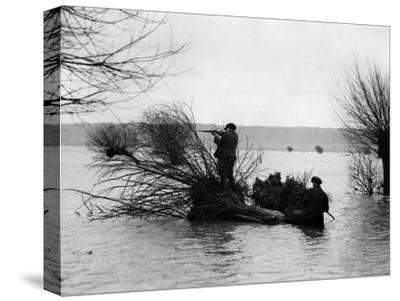 Duck Moor--Stretched Canvas Print