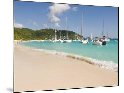 Popular Moorings For Bareboaters and Charter Sail, White Bay, Jost Van Dyke, Bvi-Trish Drury-Mounted Photographic Print