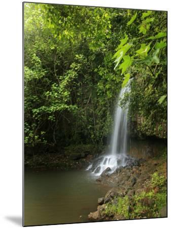 Kalihiwai Stream and Waterfall, Hawaii, USA-Douglas Peebles-Mounted Photographic Print