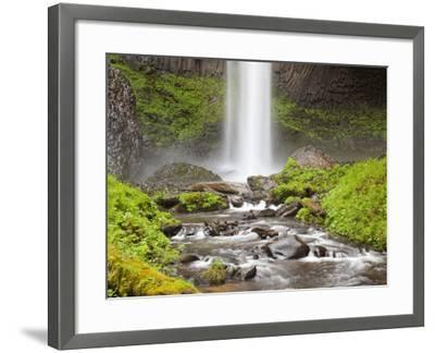 Latourell Falls, Columbia River Gorge, Oregon, USA-Jamie & Judy Wild-Framed Photographic Print