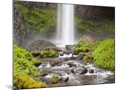 Latourell Falls, Columbia River Gorge, Oregon, USA-Jamie & Judy Wild-Mounted Photographic Print