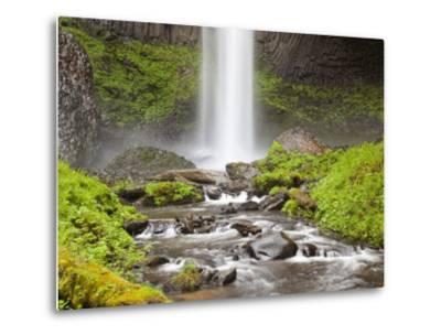 Latourell Falls, Columbia River Gorge, Oregon, USA-Jamie & Judy Wild-Metal Print