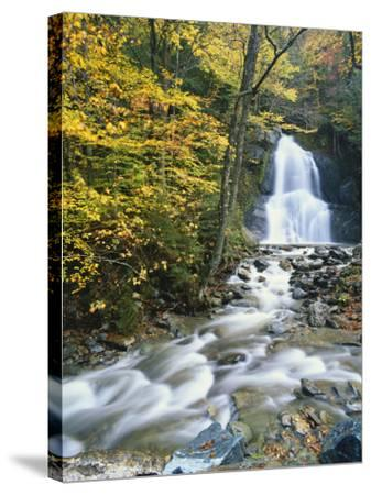 Moss Glen Falls in Autumn, Granvillie, Vermont, USA-Adam Jones-Stretched Canvas Print