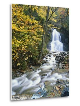 Moss Glen Falls in Autumn, Granvillie, Vermont, USA-Adam Jones-Metal Print