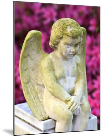 Statue of a Cherub in Bonaventure Cemetery, Savannah, Georgia, USA-Joanne Wells-Mounted Photographic Print