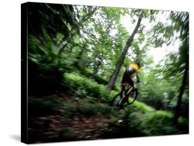 Blurred Action of Recreational Mountain Biker Riding on the Trails--Stretched Canvas Print