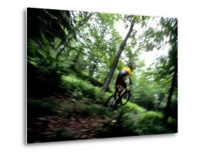 Blurred Action of Recreational Mountain Biker Riding on the Trails--Metal Print
