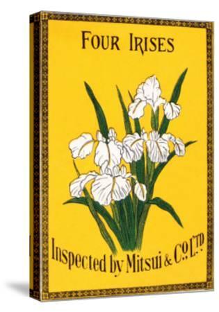 Four Irises--Stretched Canvas Print