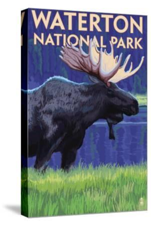 Waterton National Park, Canada - Moose at Night-Lantern Press-Stretched Canvas Print