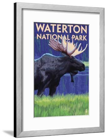 Waterton National Park, Canada - Moose at Night-Lantern Press-Framed Art Print