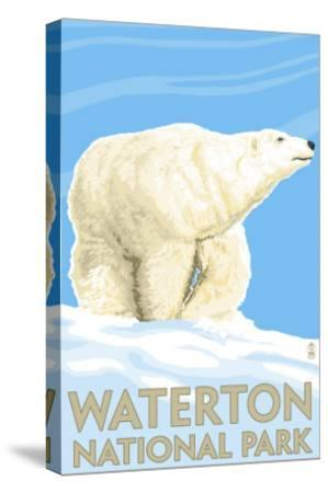 Waterton National Park, Canada - Polar Bear-Lantern Press-Stretched Canvas Print