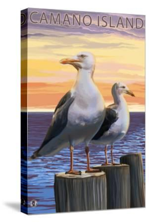 Sea Gulls - Camano Island, WA-Lantern Press-Stretched Canvas Print