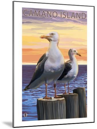 Sea Gulls - Camano Island, WA-Lantern Press-Mounted Art Print