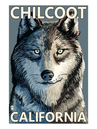 Chilcoot, California - Wolf Face-Lantern Press-Art Print