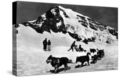 Switzerland - Dogsledding at Jungfraujoch-Lantern Press-Stretched Canvas Print