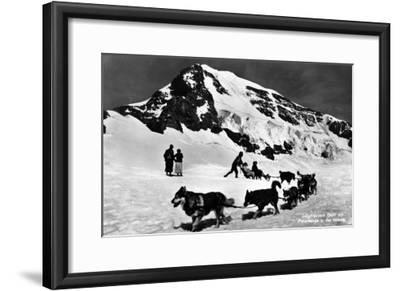 Switzerland - Dogsledding at Jungfraujoch-Lantern Press-Framed Art Print