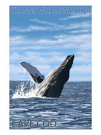 Hyannis Whale Watcher - Cape Cod, MA-Lantern Press-Framed Art Print