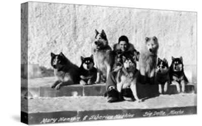 Big Delta, Alaska - Mary Hansen and Siberian Huskies-Lantern Press-Stretched Canvas Print