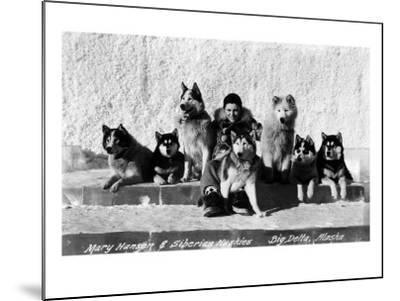 Big Delta, Alaska - Mary Hansen and Siberian Huskies-Lantern Press-Mounted Art Print