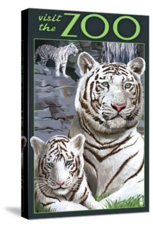 Visit the Zoo - White Tiger Family-Lantern Press-Stretched Canvas Print