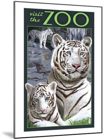 Visit the Zoo - White Tiger Family-Lantern Press-Mounted Art Print