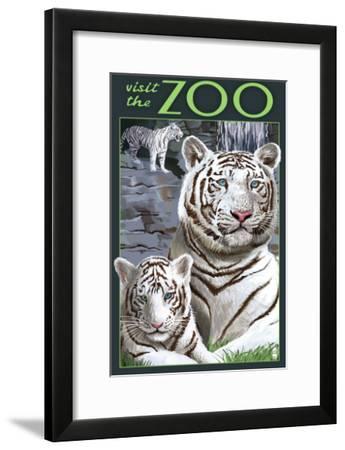 Visit the Zoo - White Tiger Family-Lantern Press-Framed Art Print