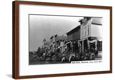 Telluride, Colorado - View of a Pack Train-Lantern Press-Framed Art Print