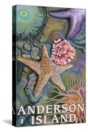 Anderson Island, WA Tidepools-Lantern Press-Stretched Canvas Print