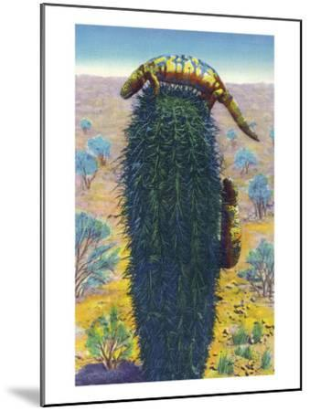 New Mexico - View of Gila Monsters on Cactus-Lantern Press-Mounted Art Print