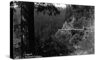California - Viaduct along the Redwood Highway-Lantern Press-Stretched Canvas Print