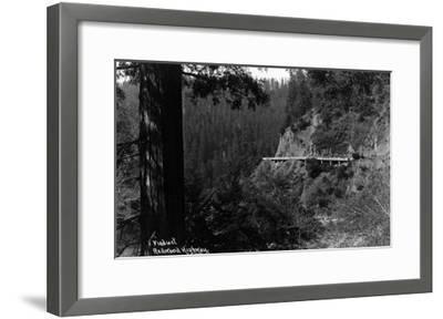 California - Viaduct along the Redwood Highway-Lantern Press-Framed Art Print