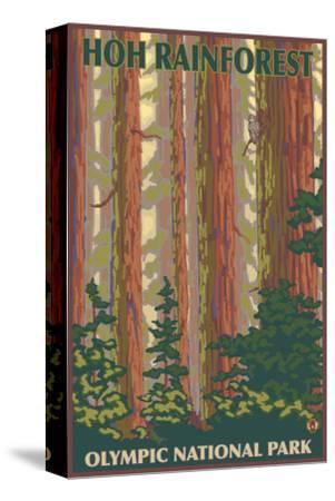 Hoh Rainforest - Olympic National Park-Lantern Press-Stretched Canvas Print