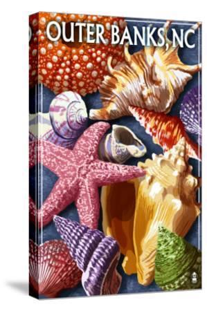 Outer Banks, North Carolina - Shells-Lantern Press-Stretched Canvas Print