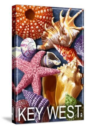 Key West, Florida - Shells-Lantern Press-Stretched Canvas Print