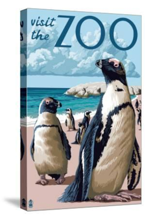 Black Footed Penguins - Visit the Zoo-Lantern Press-Stretched Canvas Print