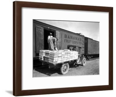 Loading Peaches in Car at Donald, 1928-Asahel Curtis-Framed Giclee Print