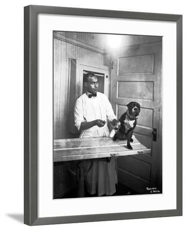 Veterinary Care of Dog, 1921-Marvin Boland-Framed Giclee Print