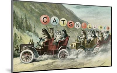 Cats in Cars, Catskill Mountains, New York--Mounted Art Print