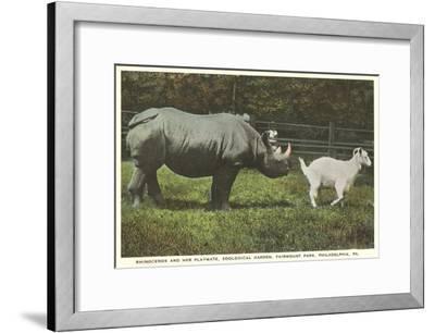 Rhino and Goat, Zoo, Philadelphia, Pennsylvania--Framed Art Print
